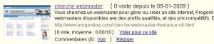 cherche-webmaster-2